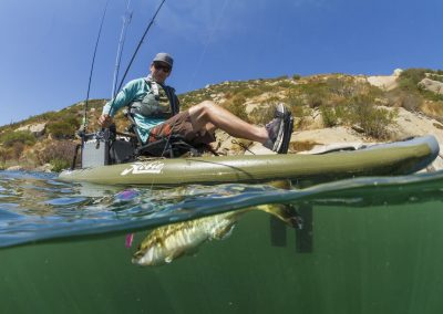 i11S_action_fishing_bass_overunder_underwater_lake_Morgan_jpg_1600x1600__generated